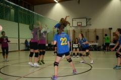 Indiaca-Turnier Breitenbach 30.10.2015
